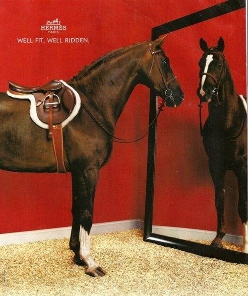 hermes horse