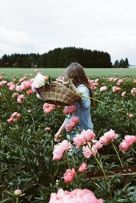 come avere una pelle perfetta, theladycracy.it, elisa bellino, fashion blogger italia, campo fiori rosa,..
