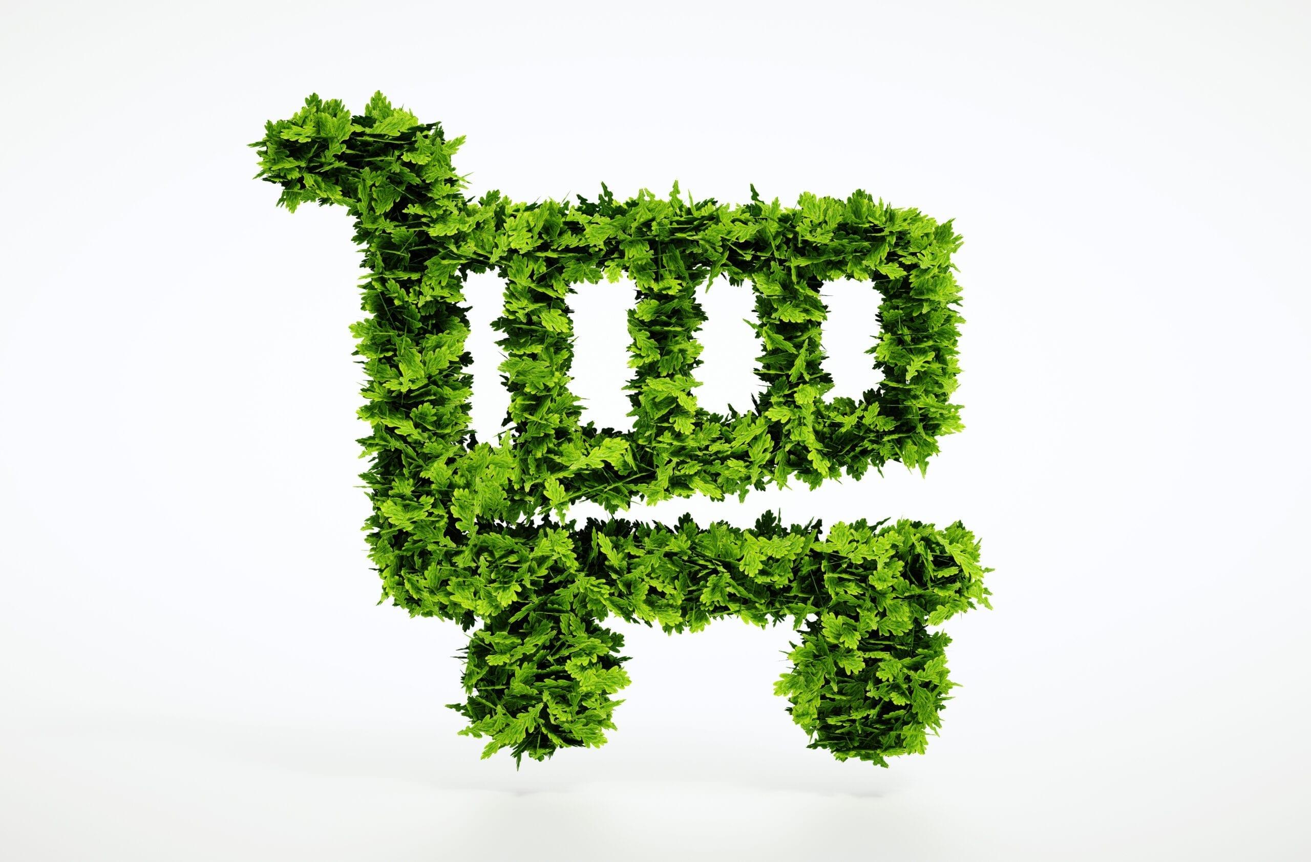 lo shopping sostenibilie